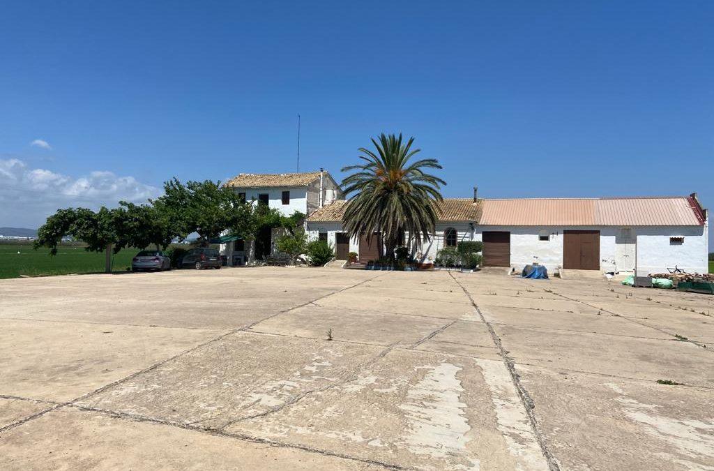Visita a la Albufera de Valencia y sus plantaciones de ARROZ